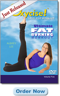The Ultimate Fat Burning Workout Level 5 DVD